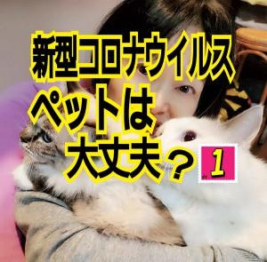 alt=''新型コロナウイルス,ペット感染,犬猫,大丈夫?''
