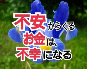 alt=''アヤメ,花言葉,メッセージ,5月5日''